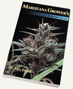 Marijuana Insiders Guide