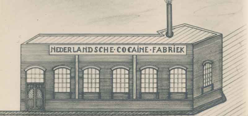 Dutch Cocaine Factory