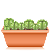 Peyote cacti growkit
